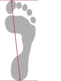 большой размер кроссовок